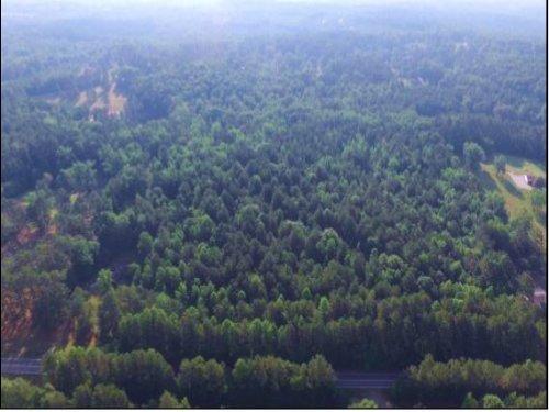 19.99 Acres On Cascade Palmetto Hwy : Palmetto : Fulton County : Georgia