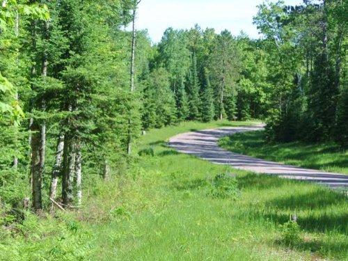 Beautiful Garretts Landing : Newbold : Oneida County : Wisconsin