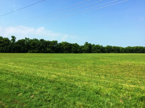 Mathews, Alabama - 22.7 +/- Acres : Mathews : Montgomery County : Alabama