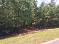 3 Acre Wooded Home Site