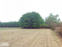9 Acre Loris Homesite