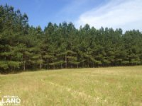 Loris Country Home Site