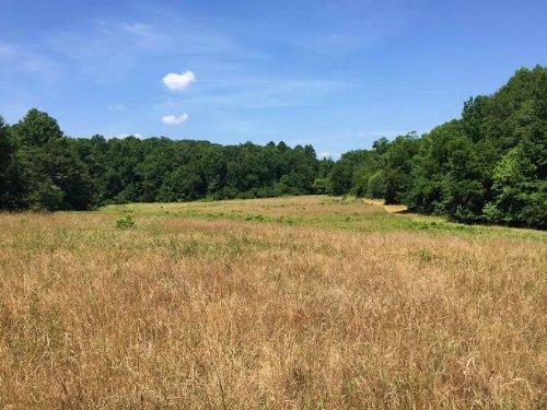 Cobb Farm Near Lake Russell : Elberton : Elbert County : Georgia