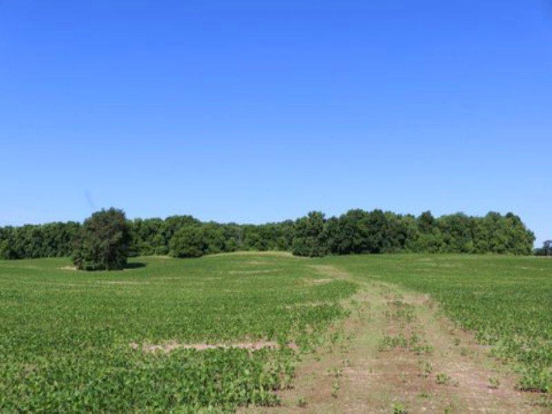 Remarkably Unique 32 14 Acre Lot Farm for Sale Oregon