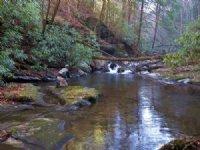 Big Lost Creek