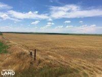 Kit Carson County Farmland/cropland