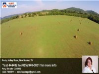 134 Acre Cattle Or Dairy Farm