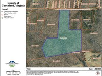 21.5 Wooded Acres : Goochland : Goochland County : Virginia