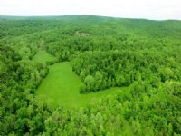 89 Acres, 30615 Little Proctor Rd : Gravois Mills : Morgan County : Missouri
