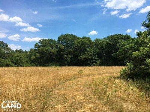 Lowndesville Mini-Farm : Lowndesville : Abbeville County : South Carolina