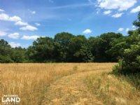 Lowndesville Mini-farm