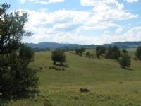 5.03 Acres In South Park Ranches