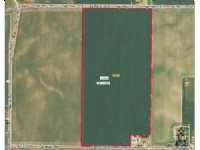 78.87 Acres - Prime Farmland
