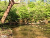 Chauga River Recreational & Timberl