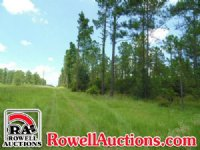 271± Acres Of Timberland