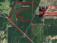 168.15 Ac - Recreational Tract W/ C : Jasper : Jasper County : Texas