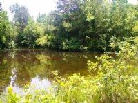 20.00 Acres Fishing Land, Hunting