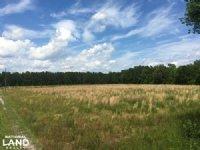 Hampton Small Farm & Hunting Estate