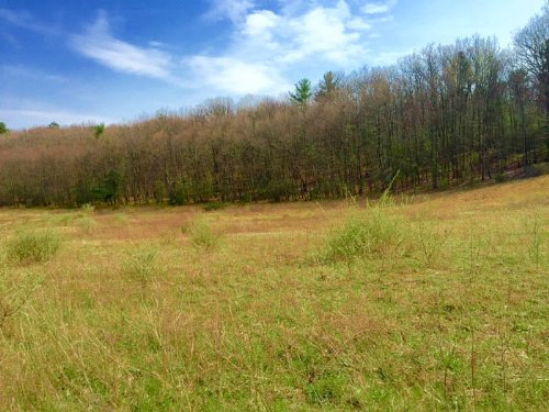 23+/- Acres, Land, Millville Area : Millville : Columbia County : Pennsylvania