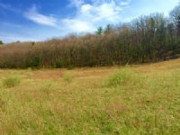 43+/- Acres Land, Well & Septic : Millville : Columbia County : Pennsylvania