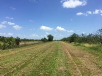 725± Acres Of Agricultural Land