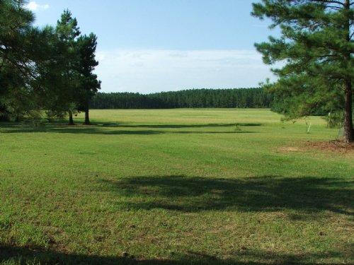 Clark Farm Tract : Perkins : Jenkins County : Georgia