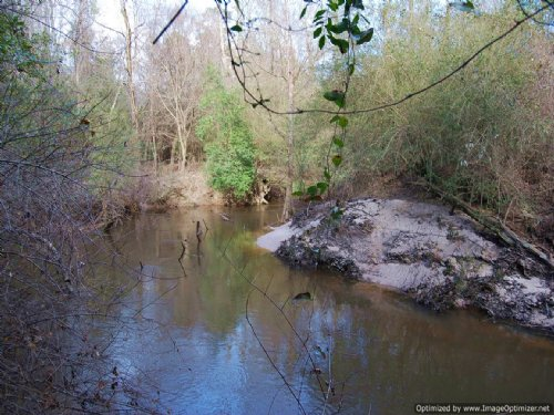 212± Ac Premier Hunting Tract : Poplarville : Pearl River County : Mississippi