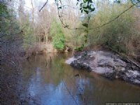 212± Ac Premier Hunting Tract