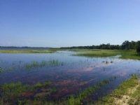 500± Acre Lakefront Development