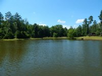 Cedar Creek Plantation & Timber