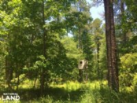 Summerton Hunting And Recreational