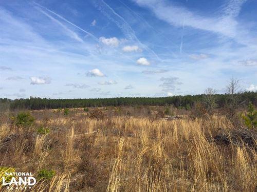 Upper Kershaw Homesite Investment : Kershaw : South Carolina