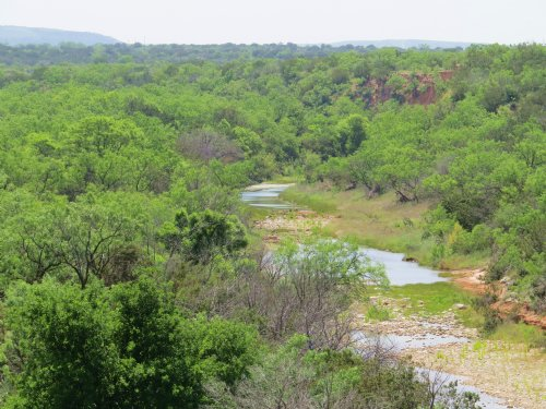 Seasonal Creek, Great Hunting : Robert Lee : Coke County : Texas