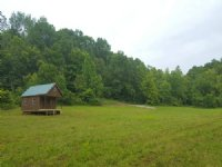 Poston Cabin On 9+ Acres
