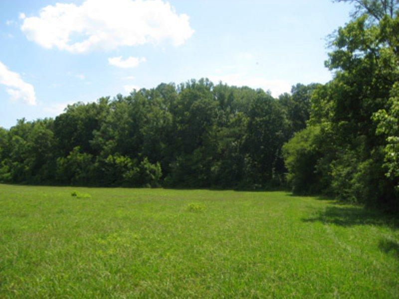 37.45 +/- Acres, Rydal : Rydal : Bartow County : Georgia