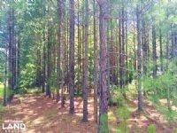 Soperton Settlement Tiger Creek Hom