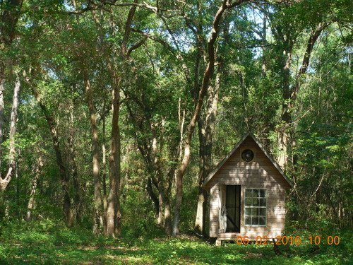 24 Acres With Four Buildings(a-500) : Melrose : Alachua County : Florida