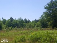 Rocky Point Development Land
