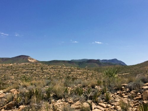 Remote And Private 80 Acres. : Terlingua : Brewster County : Texas