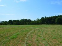 24 Acres Pasture With Pond