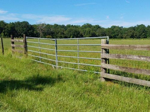 20.3 Gorgeous Fenced Ac High & Dry : Brooksville : Hernando County : Florida