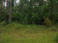 122± Ac Hunting & Timberland