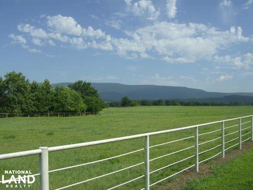 590+/- Acre Working Cattle & Hay Ra : Havana : Yell County : Arkansas