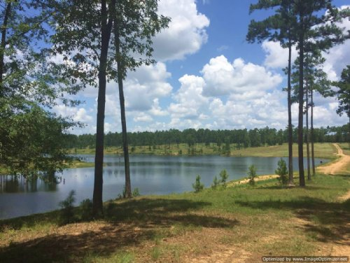 131± Ac On 30± Ac Stocked Lake : Brookhaven : Lincoln County : Mississippi