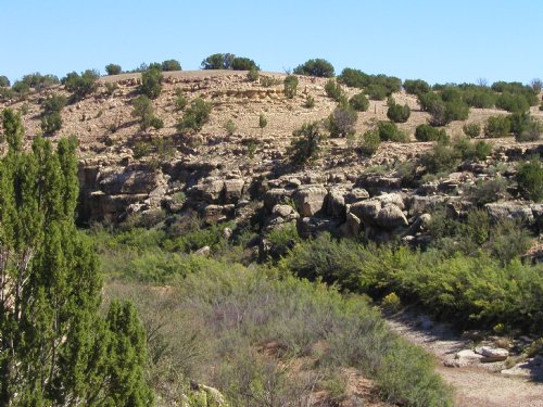 Wilderness Ranch Creek Frontage : Heber : Navajo County : Arizona
