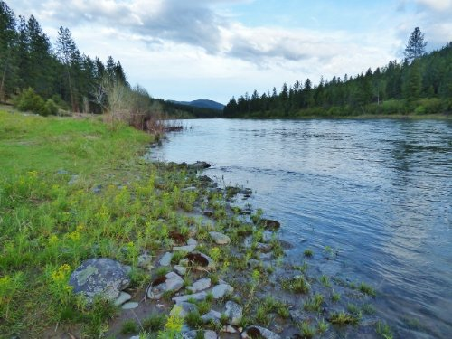 Western Montana Clark Fork Riverfro : Superior : Mineral County : Montana