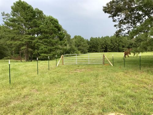 112 Acres in Summit, Mississippi : Summit : Pike County : Mississippi