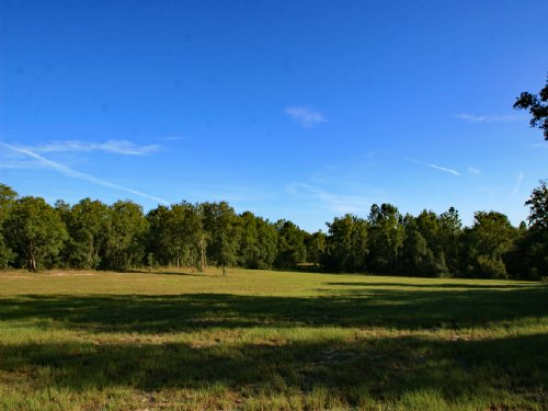 163 Acres For Sale : McAlpin : Suwannee County : Florida