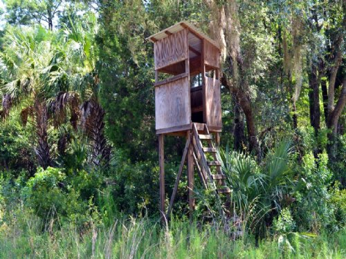 Cedar Key Hunting Preserve : Cedar Key : Levy County : Florida