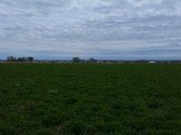 80 Acre Farm